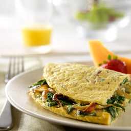 Caramelized Onion, Arugula and Parmesan Cheese Omelet